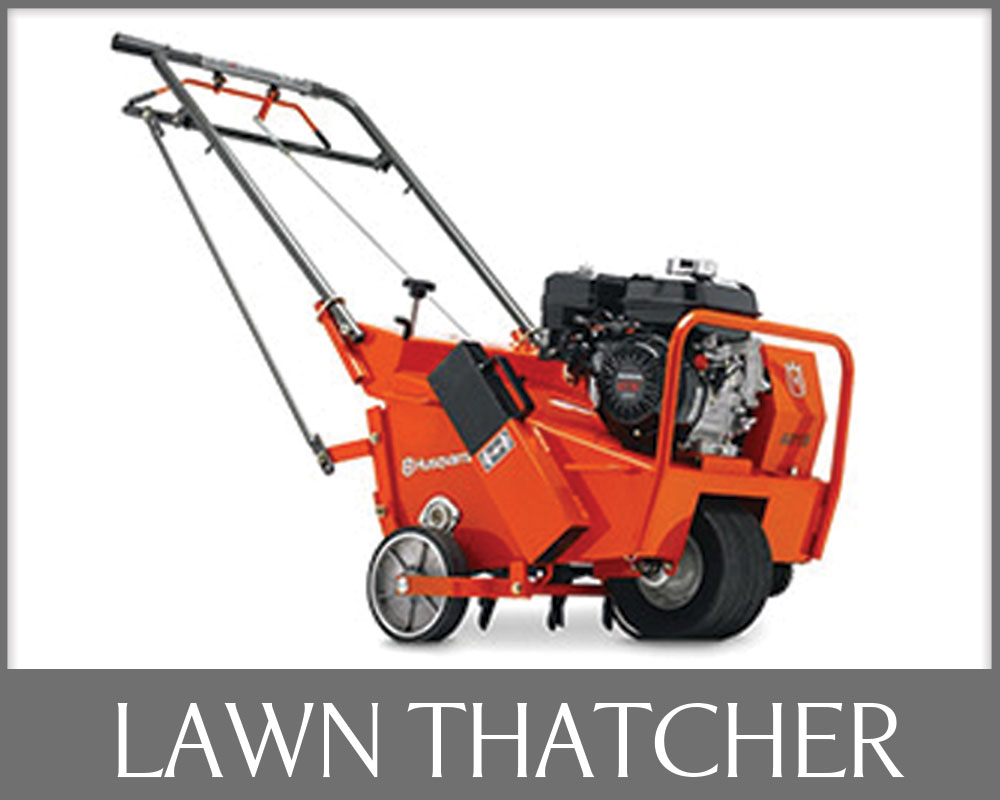 Lawn Thatcher